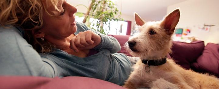 Vrouw en hond op bank bij de cursus Bach Bloesem therapie voor dieren