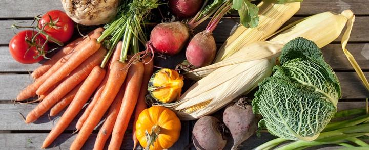 Uitgestalde groenten op tafel bij cursus Orthomoleculaire voeding