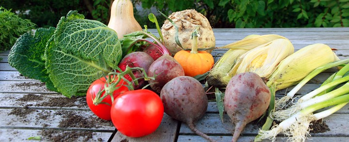 Gezonde voeding uit de cursus Voedingsleer voor een vitale leefstijl